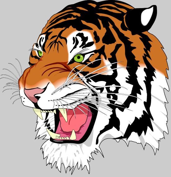Image Result For Coloring Pages Tigers
